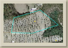 Tract 2 Causey Rd, Lakeview NC 28350